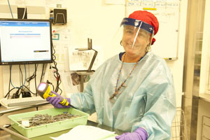 Health professional wearing PPE